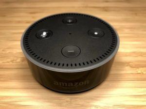 AmazonEchoDotCaseBefore